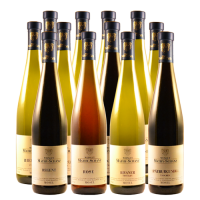 BIG MIX (12 Fl.) Weinpaket